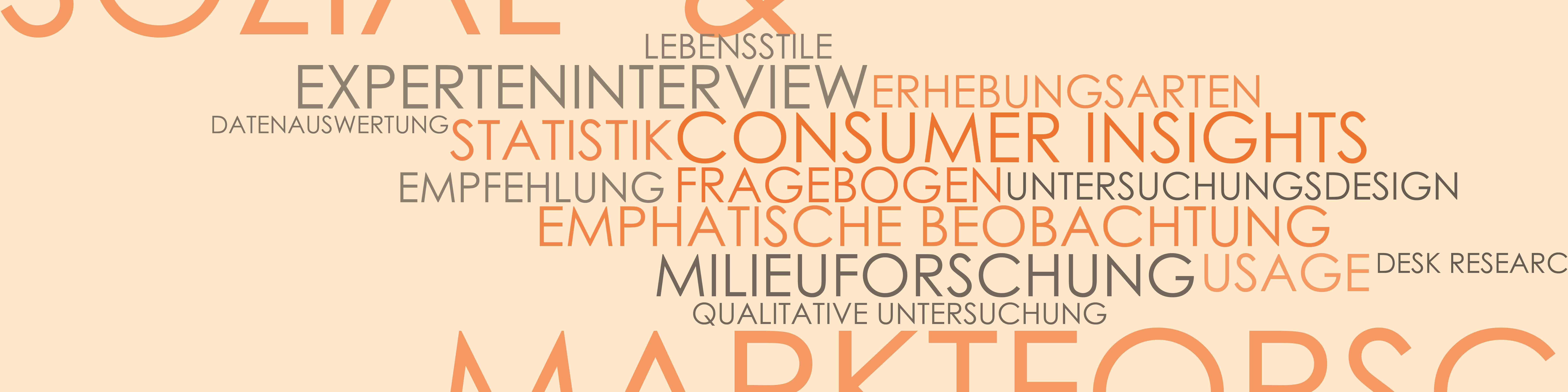Integriertes Produktdesign, Lerhrinhalte, Sozial- und Marktforschung
